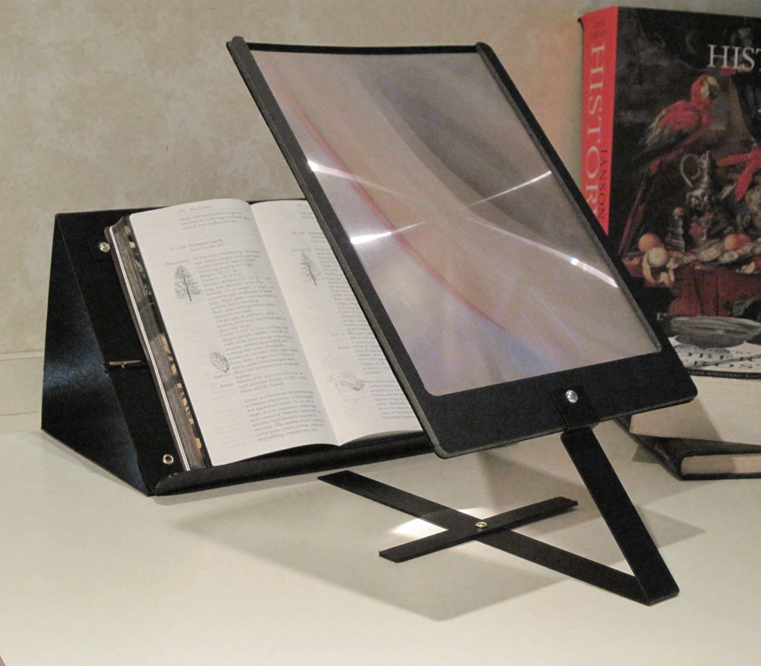 Prop It Bookrest and Copyholder with 2x Page Magnifier