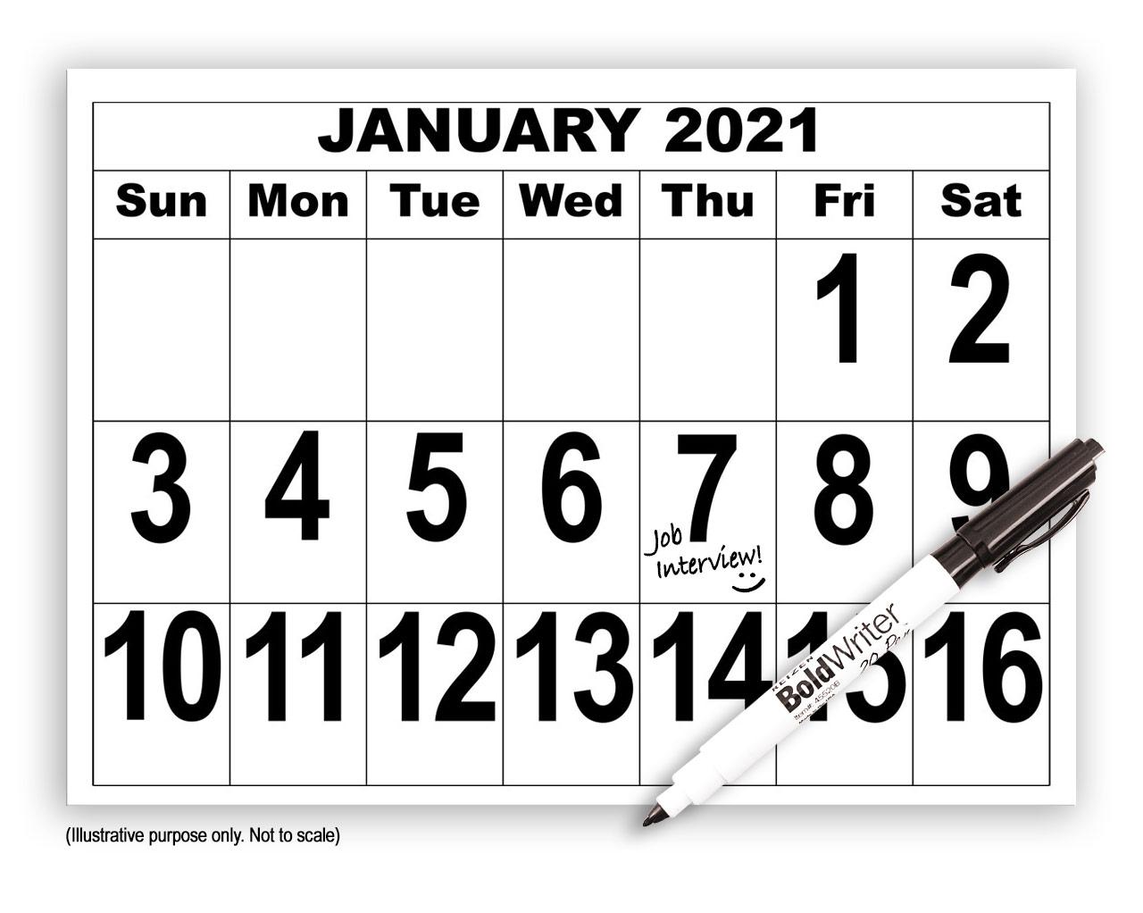Giant Print Calendar - 2021 with BoldWriter 20 Pen